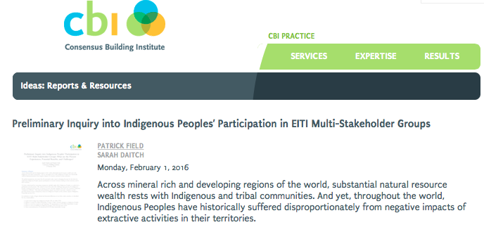 Preliminary Inquiry into Indigenous Peoples' Participation in EITI Multi-Stakeholder Groups